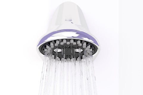 Horne fixed ligature and vandal resistant shower head
